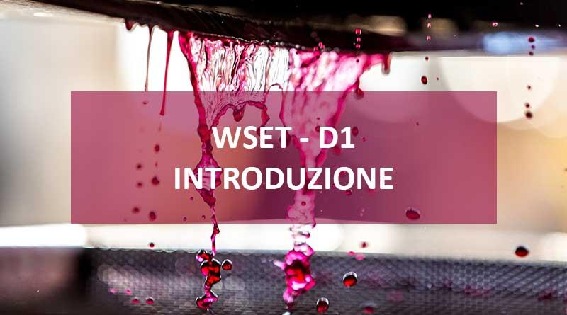 WSET D1 – Come si produce il vino