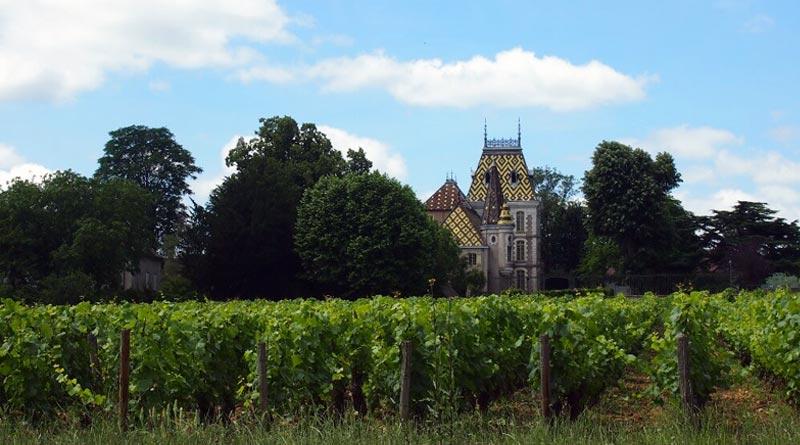 Côte d'Or: rivoluzione nella classificazione dei vini di Borgogna