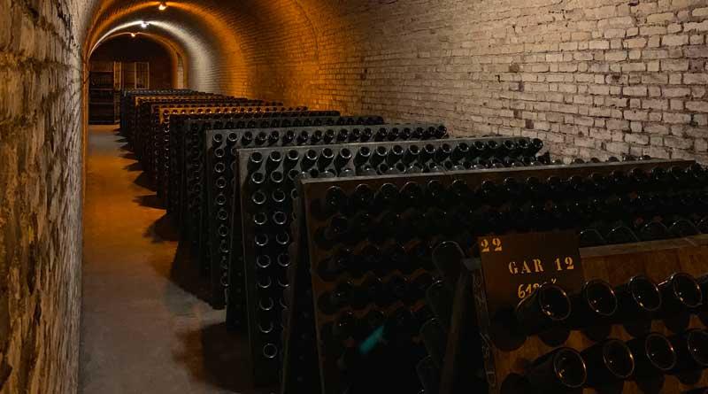 Champagne vendemmia 2020: perderci ora per guardare al futuro