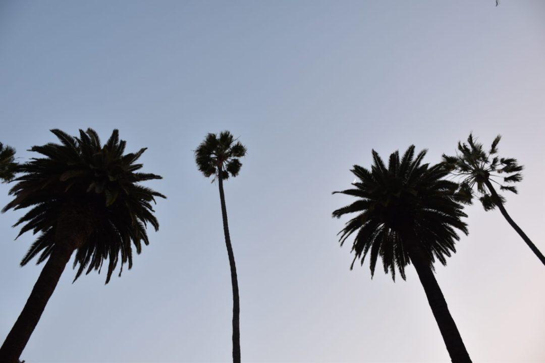 sunset los Angeles