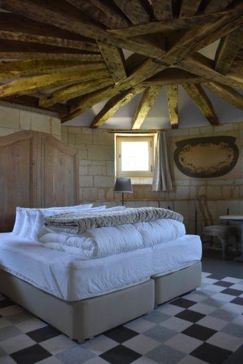 Les Suites du Chateau de Candes saint martin