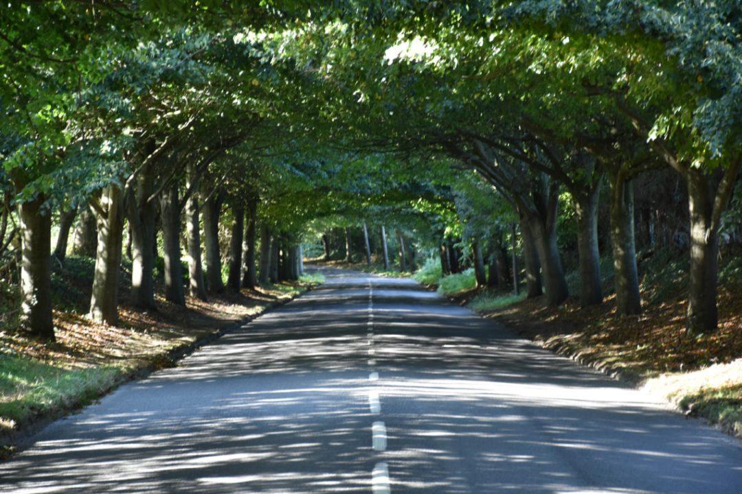route de Jersey
