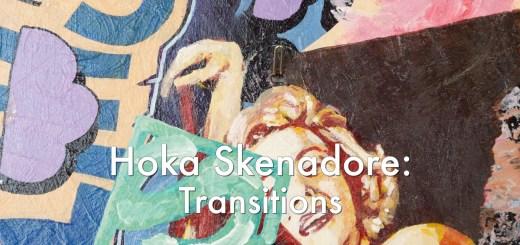 Hoka Skenadore - Transitions