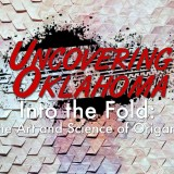 Into the Fold: The Art and Science of Origami