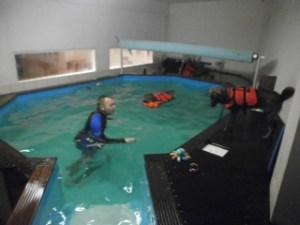 Hunde mit Schwimmweste