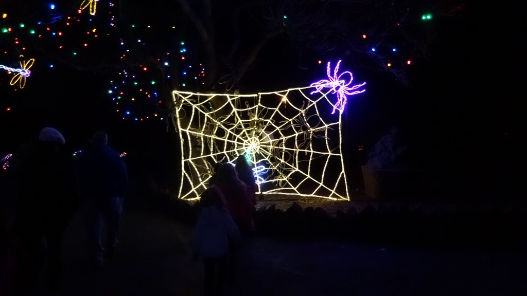 Christmas Zoo Lights