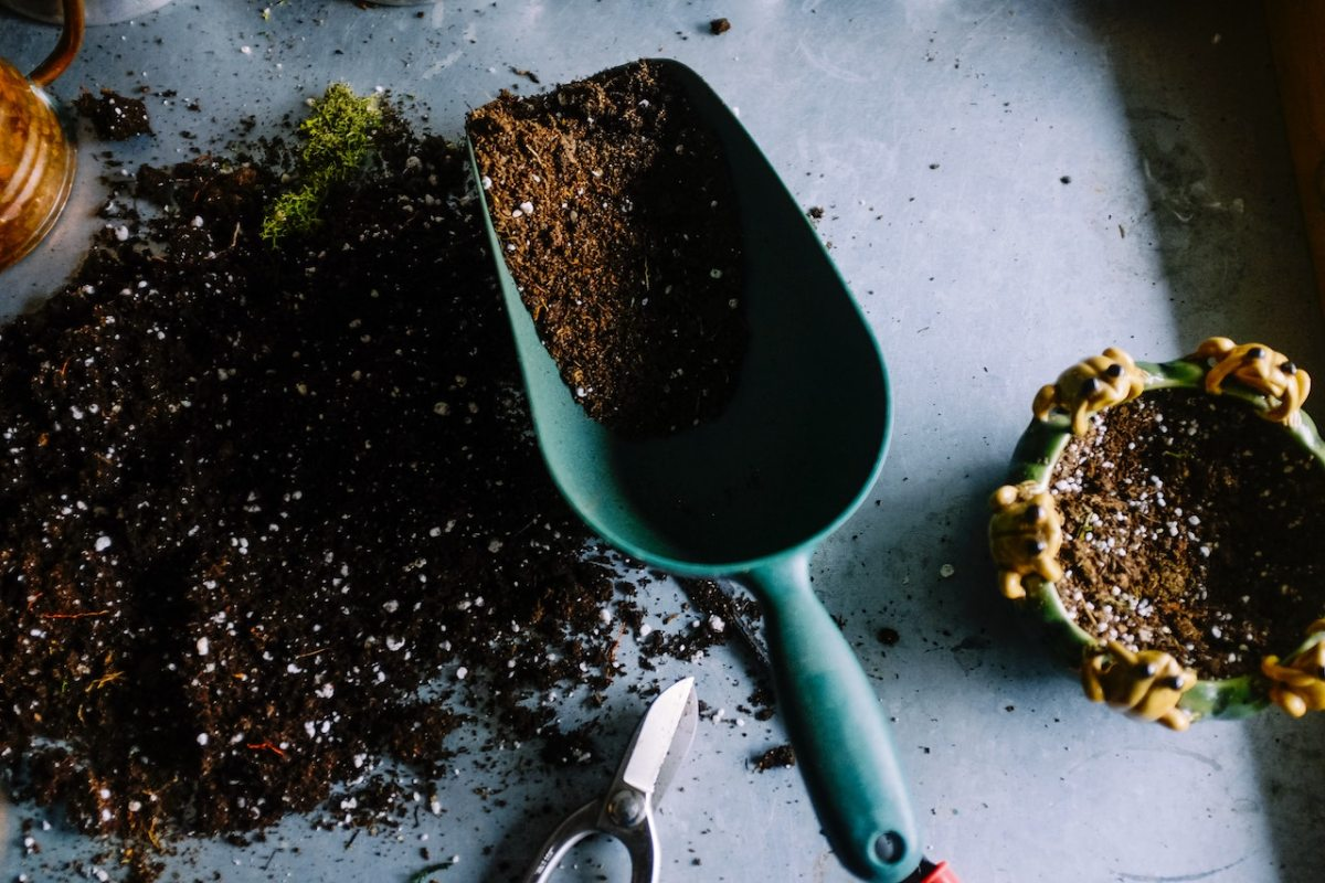 How To Compost Like A Pro in 2021