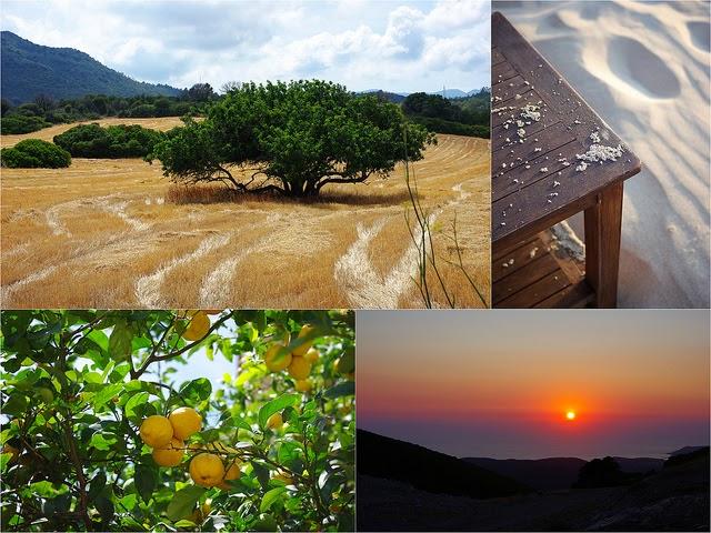 Images de la Sardaigne  champs, sable, citrons