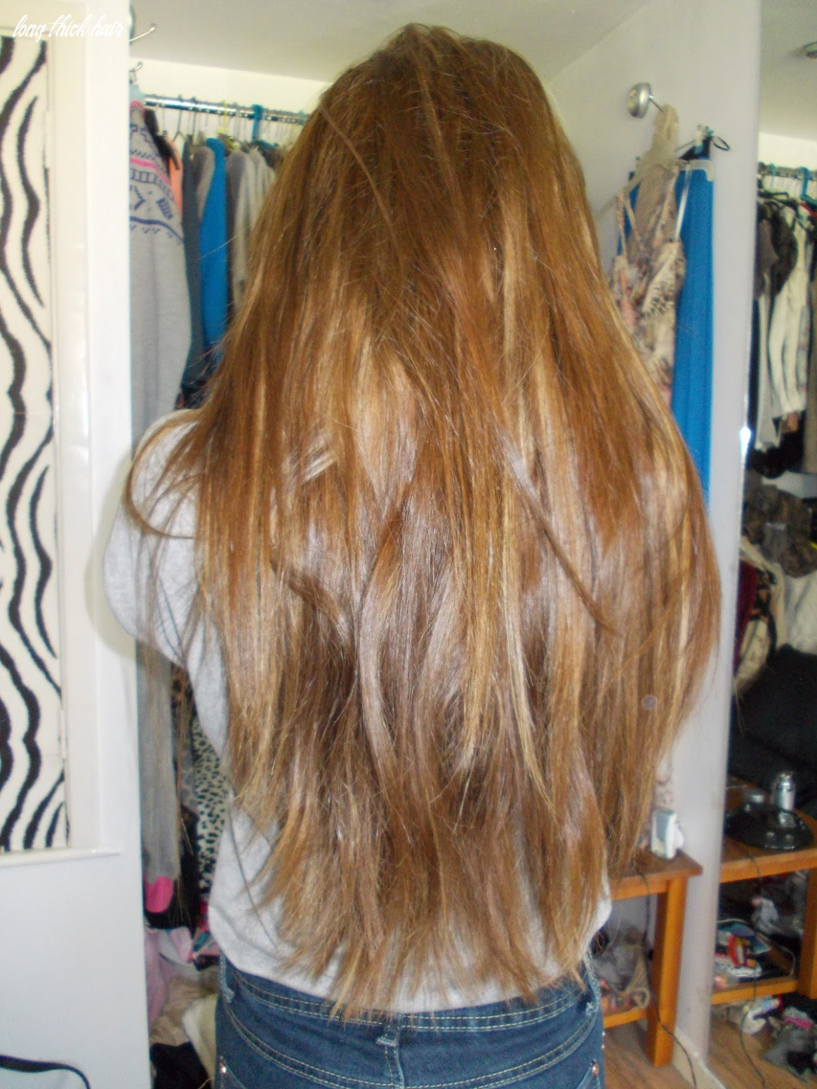 Her heart is in paris: how to: volumise long, thick hair long thick hair