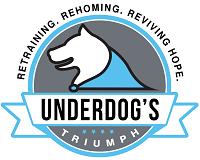 Underdog's Triumph