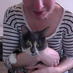 Kate Balsley cradles her grey and white cat Princess in her arms