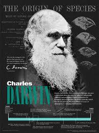 18 darwin