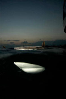 Grey Reef Shark - photographed by underwater australasia member Karl Scaife