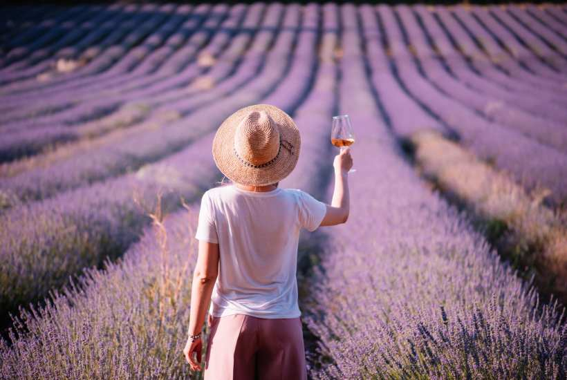 A woman raises a glass of rose in France   © Anastasia Ness/Shutterstock