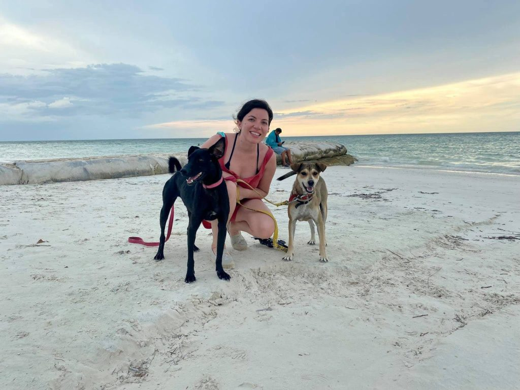 You can volunteer to walk the dogs at Refugio Animal Holbox  | © Nikki Vargas