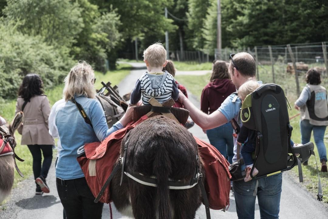 Weekend en Loir-et-Cher Les ânes de Madame