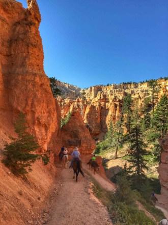 Bryce Canyon - 00049