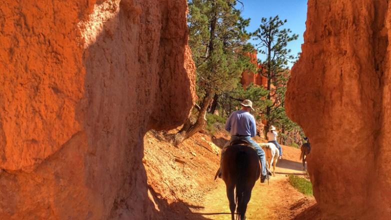 Bryce Canyon - 00061