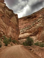 Capitol reef et Scenic Byway 12 - 00015