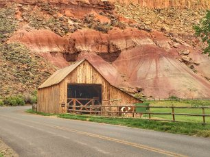 Capitol reef et Scenic Byway 12 - 00019
