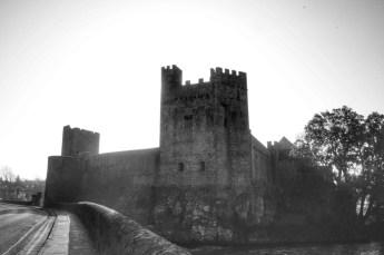 Cashel, Cahir et Blarney 13 Fev 2008 085