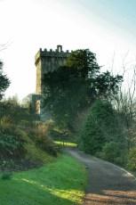 Cashel, Cahir et Blarney 13 Fev 2008 224