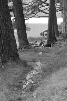 Glendalough - 00030