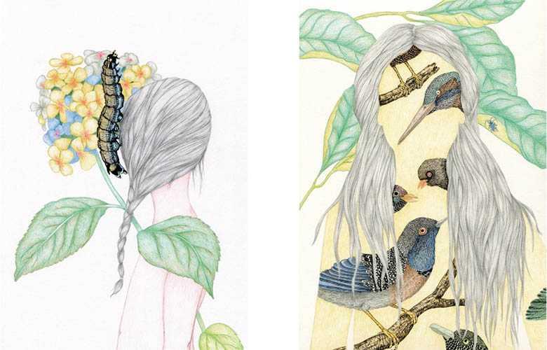delphine vaute illustrations_11