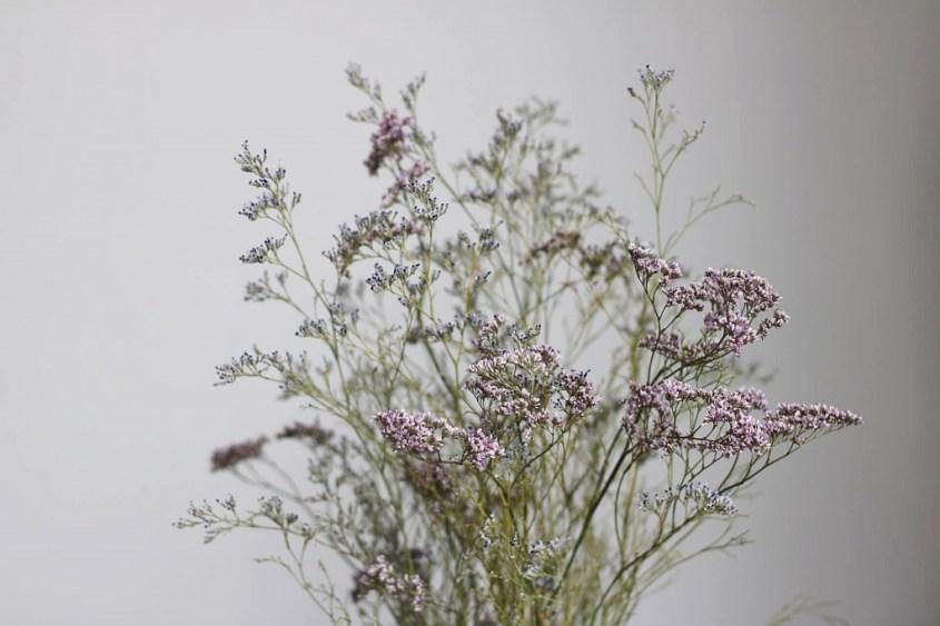deco-plantes-sechees-34