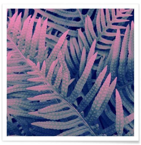 affiches-plantes-deco -12