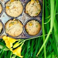 Muffins aux pêches, au miel et à la noix de coco