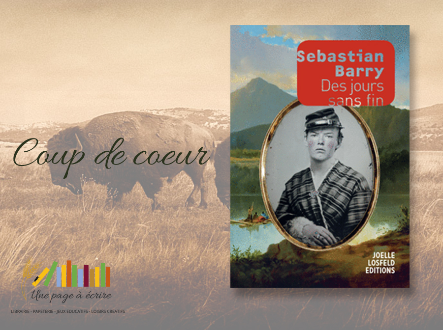 Sebastian Barry, Des jours sans fin, Editions Joëlle Losfeld (2018)