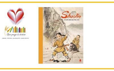 Shaolin, pays de Kung-Fu de Pierre Cornuel (Hongfei, 2020)