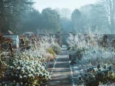 préparer son jardin pendant l'hiver