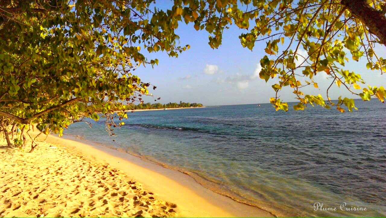 plage-martinique