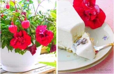 cheesecake-glacé-rhum-raisins