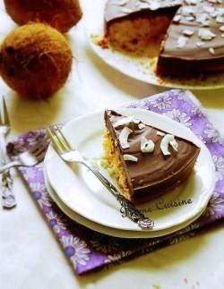 gâteau coco chocolat  (30b)