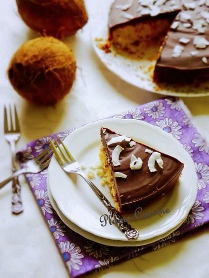 gâteau coco chocolat  (36b)