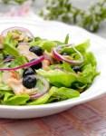 Salade poulet et myrtilles