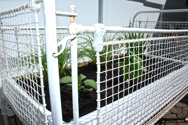 Antique-crib-turned-Herb-Garden-2