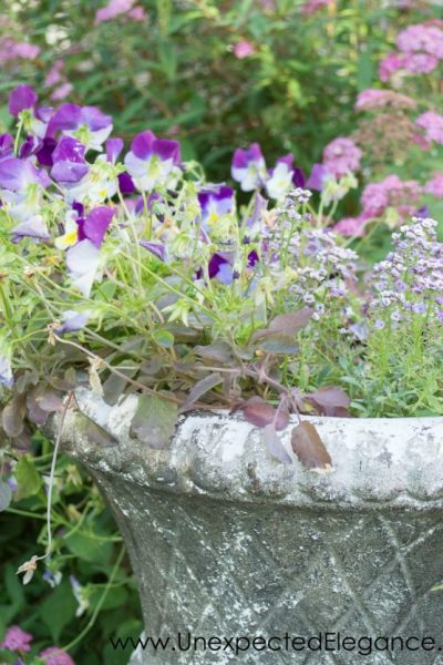 Best Ways to Save Money on Gardening
