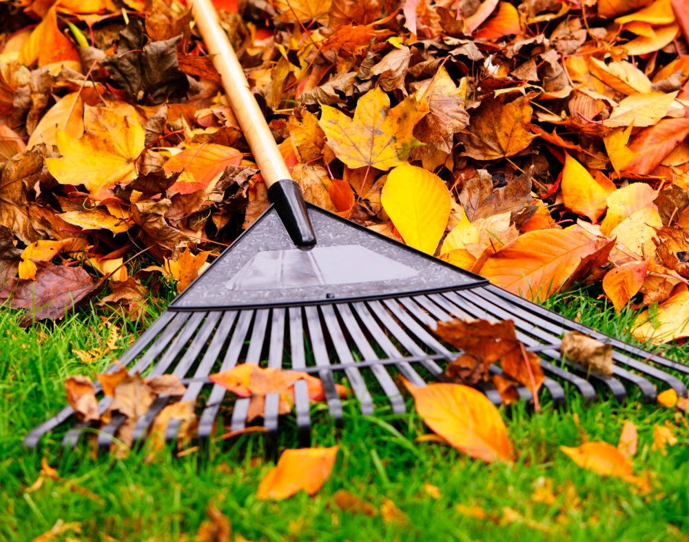 Fall Home Maintenance Tips fall maintenance tips for inside and outside your home