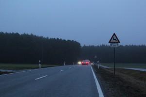 In der Dämmerung steigt die Gefahr von Wildunfällen. Auf Straßenabschnitten mit Warnschildern sollte man besonders vorsichtig fahren. Foto: ARCD.
