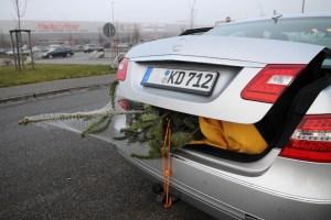 Ob im Kofferraum oder auf dem Dach: Der Tannenbaum muss ordentlich gesichert sein. Foto: TÜV Süd.