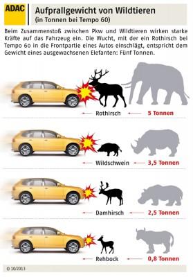 Wildunfall: Aufprallgewicht von Wildtieren. Infografik: ADAC.