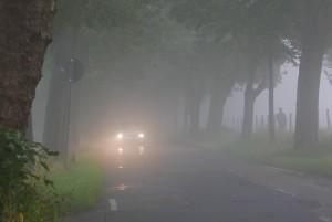 Fahren im Nebel ist anstrengend und gefährlich.  Jährlich ereignen sich mehrere Hundert Unfälle mit Personenschaden. Foto: ADAC/Achim Otto..