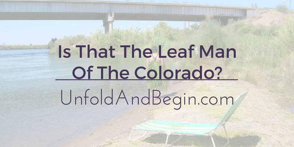 Is That The Leaf Man Of The Colorado? Creativity Prompt