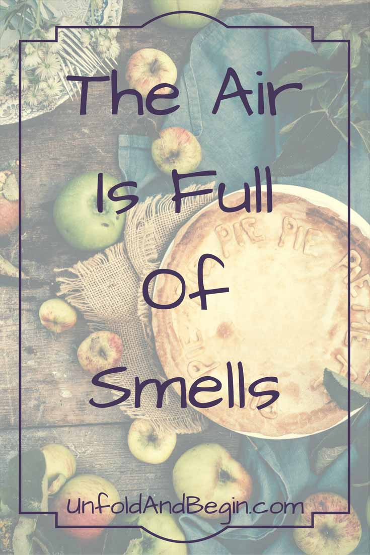 The air is full of smells.  September is here and I'm ambivalent. I'm not a fan of the steady march towards winter.  On UnfoldAndBegin.com