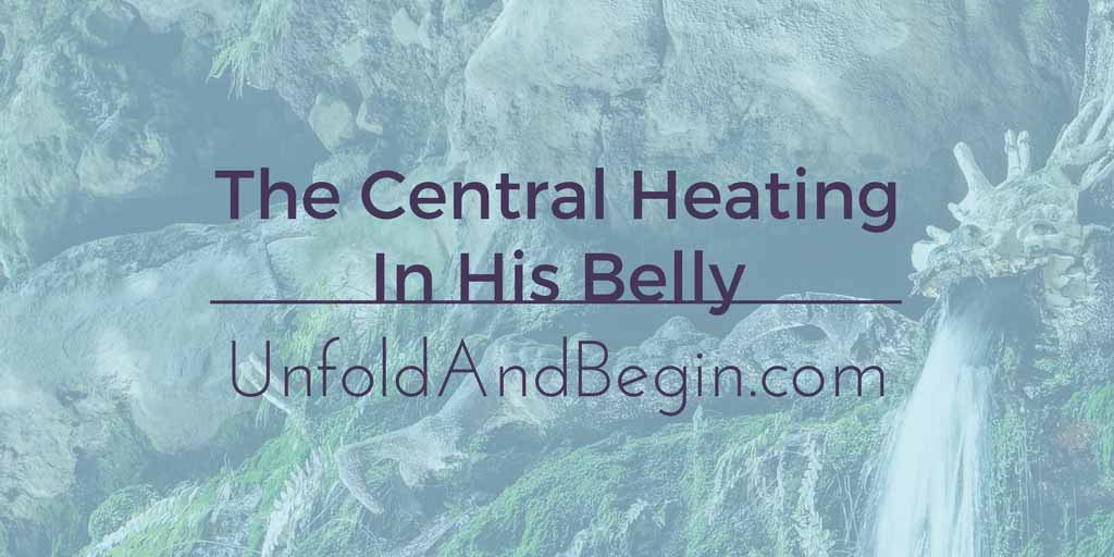 The Central Heating In His Belly Creativity Prompt