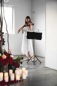 Harpist at Proposal